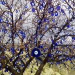 Baum_Boeses Auge