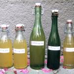 Hollersirup (Holunderblütensirup)