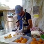 Orangensaft_frisch