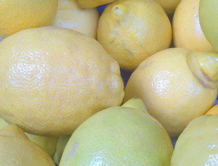 Zitronen_pur