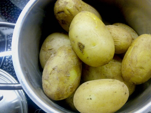 Kartoffeln gekocht