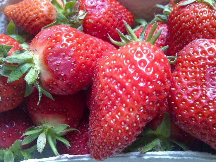 Erdbeeren_frisch