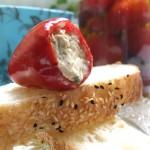 Gefüllte Mini-Paprika mit Thunfisch-Creme