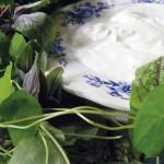 Artischocken mit Joghurt-Kräuter-Dip