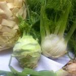 Kohlrabi- und Fenchel-Gemüse in Sahnesauce zu Bandnudeln