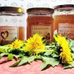 Gelee von Löwenzahnblüten in Apfel-Birnen-Saft